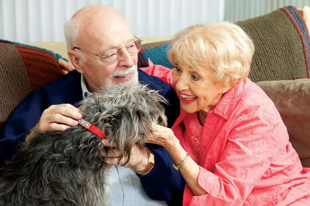 Pets Bring Life to a Morning Pointe Community