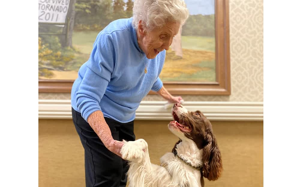 Pet Therapy Brightens Morning Pointe Residents' Days