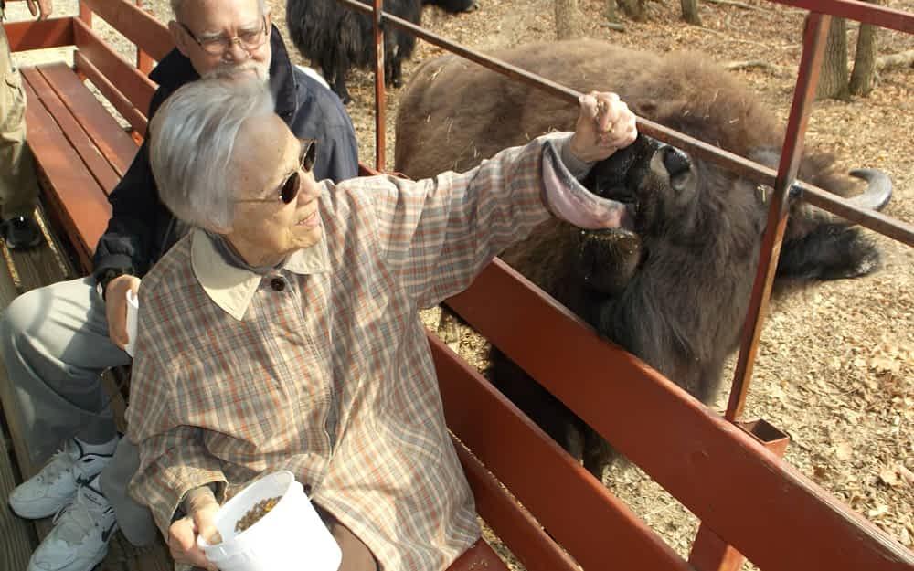 Seniors Bewildered by Wildlife at Briarwood Safari