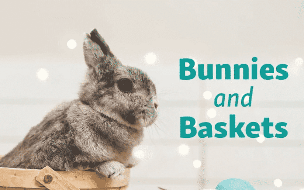Bunnies and Baskets