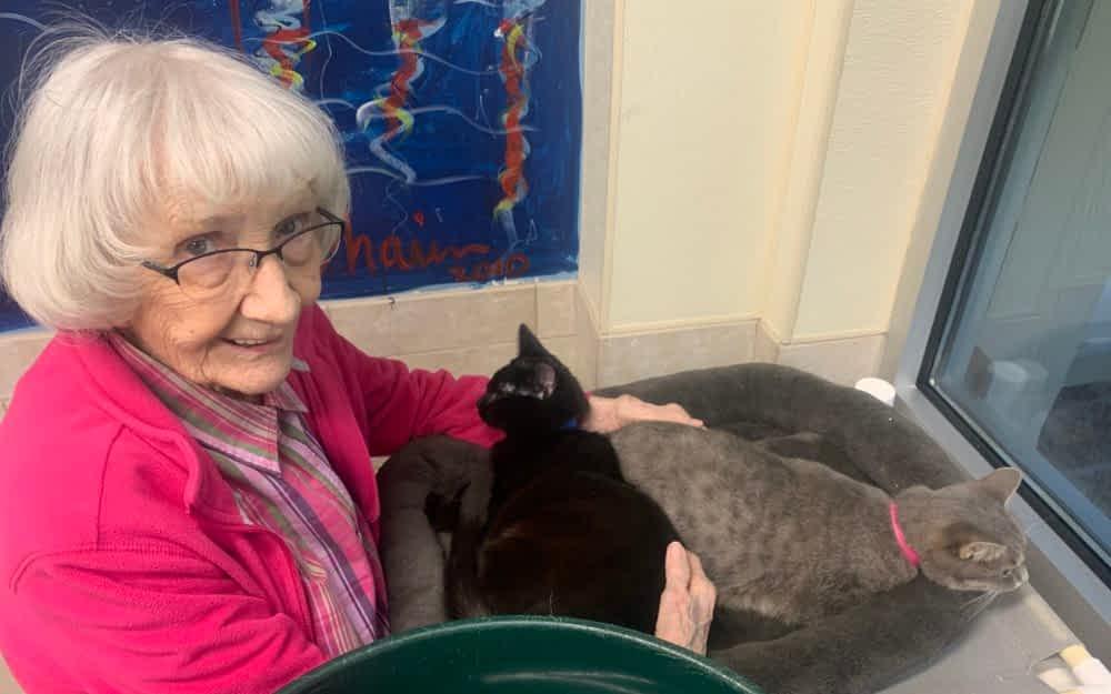 Morning Pointe Residents Volunteer at McKamey Animal Center