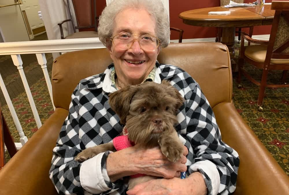 Pet Therapy Spreads Smiles at Morning Pointe