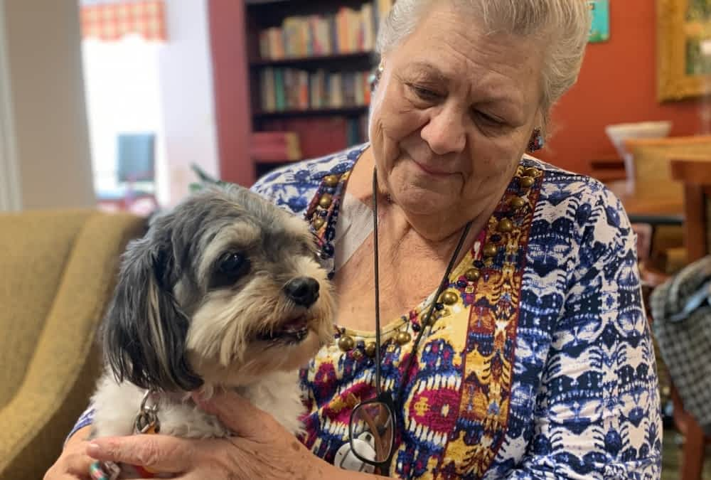 Pet Therapy a Favorite at Morning Pointe