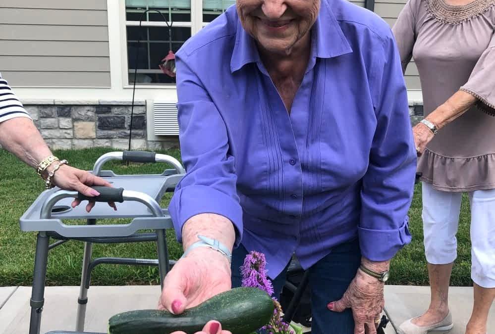 Morning Pointe Residents Harvest First Vegetables from Community Garden