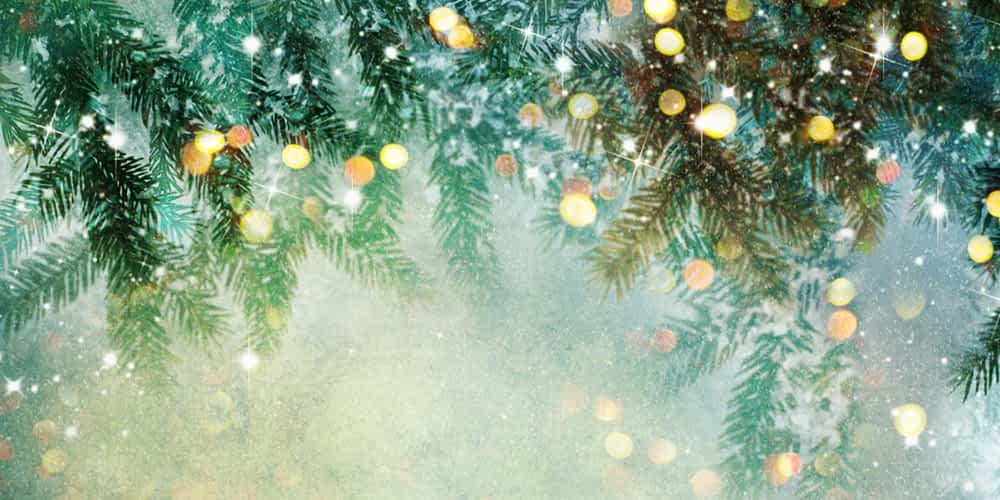 """Morning Pointe to Host """"Christmas at the Pointe"""""""