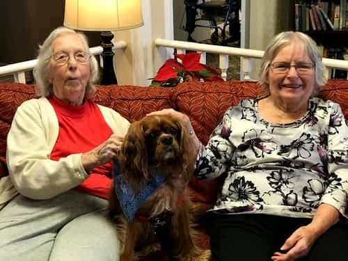 Pawsibilities Unleashed Pet Therapy Dogs Spread Smiles at Morning Pointe