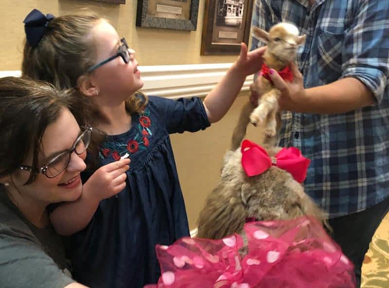 Pet Therapy Sparks Joy at Morning Pointe