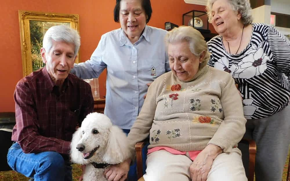 """Morning Pointe Seniors Make """"Alliance"""" with Therapy Animals"""