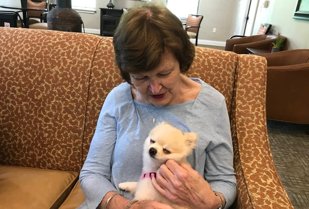 Weekly Pet Therapy Breeds Warm Feelings at Morning Pointe