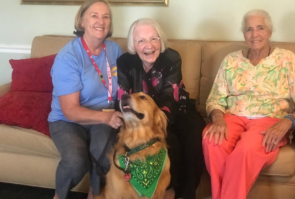 Therapy Dog Celebrates 400th Visit with Morning Pointe Residents