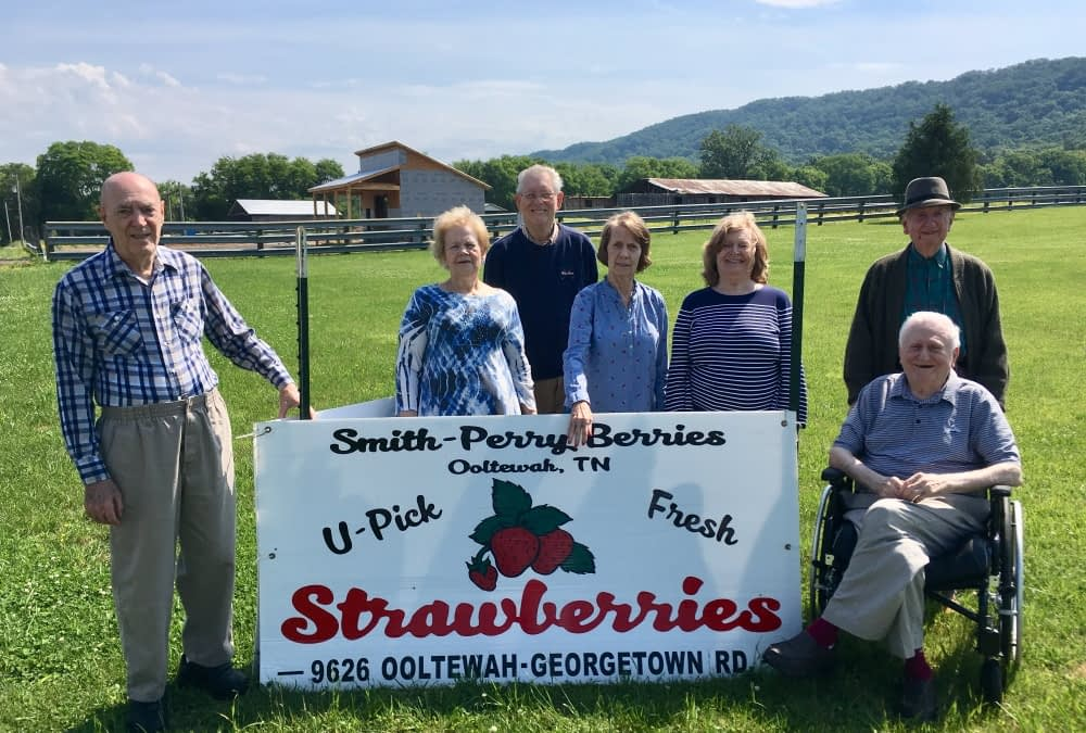 Morning Pointe Residents Pick Strawberries at Smith-Perry Berry Farm