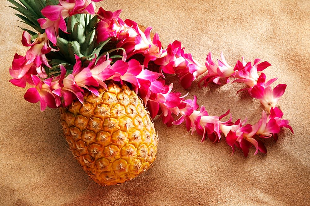 Luau with Morning Pointe of Lenoir City
