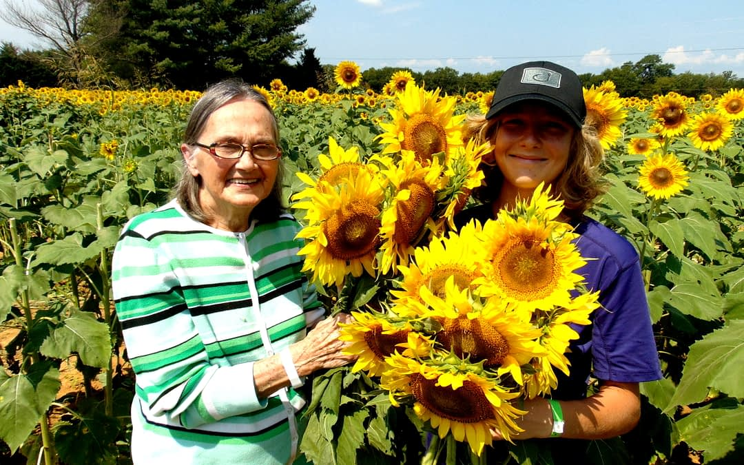 Morning Pointe Seniors Celebrate Summer with Sunflowers